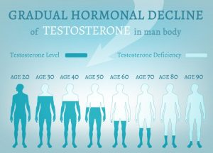 Gradual hormonal decline